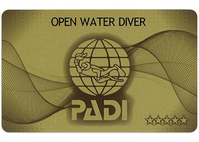 PADI 5スターゴールドカード